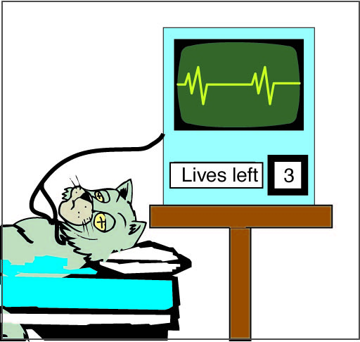 "Cat on cardiac monitor that indicates ""3 lives left"""